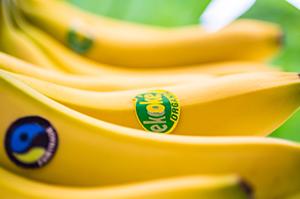 eko_oke_banan_organic_start