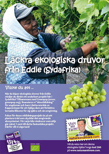 bild-Eko-druvor-Eosta-Eddie-1-cent-for-the-future