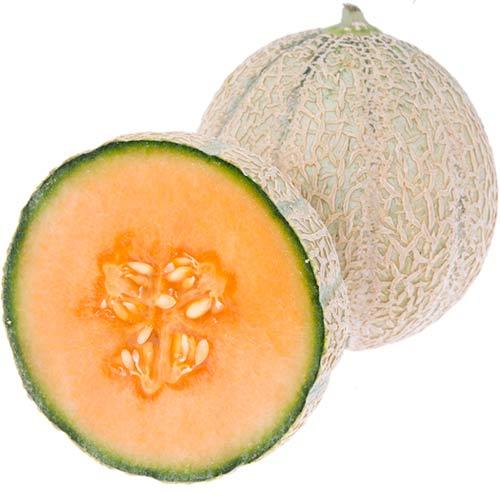 melon-cantaloupe