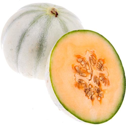 melon-charentaise