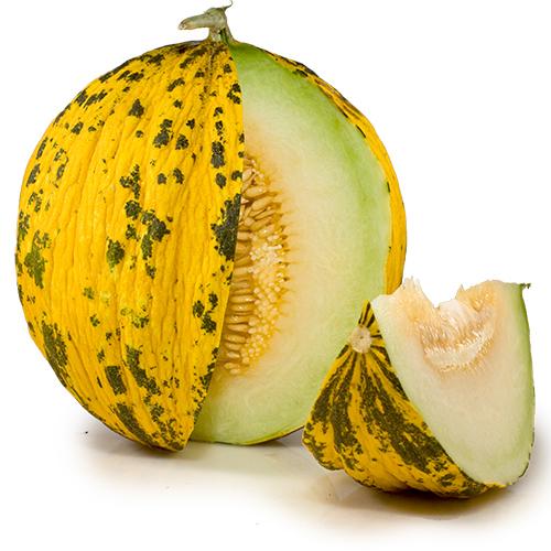 melon-tiger
