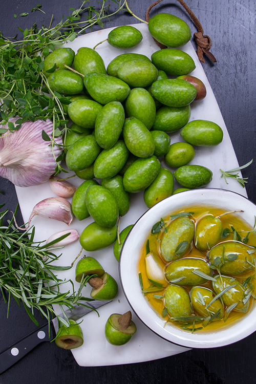 inlagda-farska-oliver2