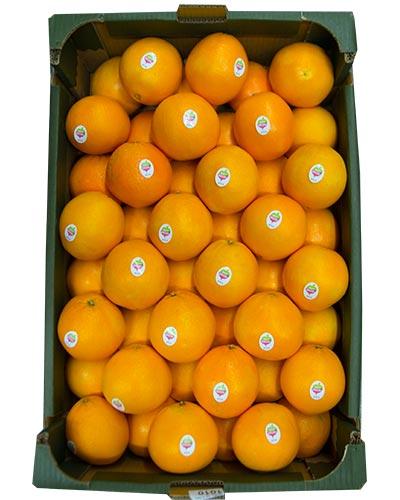 apelsin-daily-green-lada-img_5215