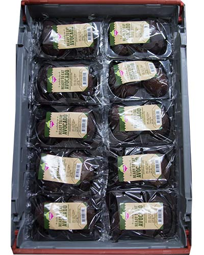 avocado-daily-greens-2p-rb-img_5885