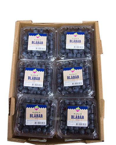 blabar-lada-daily-greens-img_4682