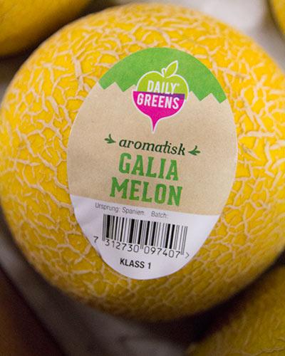 melon-galia-6st-daily-green-nara-img_2060