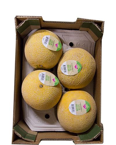 melon-galia-daily-green-lada-img_2448