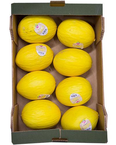 melon-honung-daily-green-img_2284