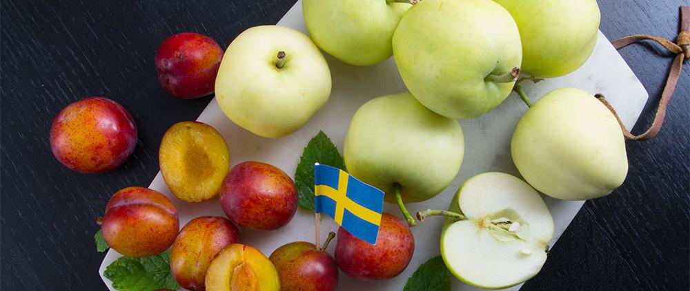 svensk-hostskord