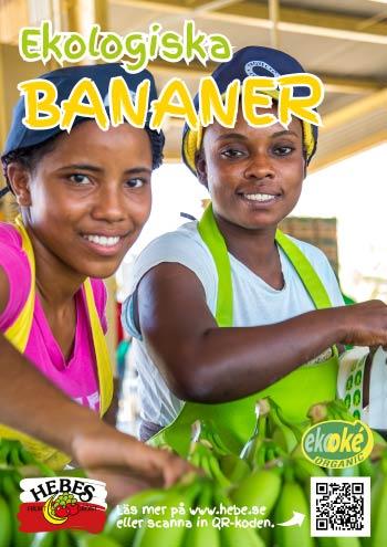 bild-A3-Bananer-Ekooke-eko-personal