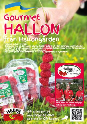 bild-A3-Hallon-hallongarden-2016