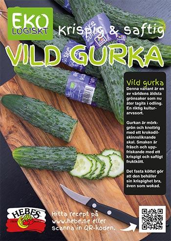 bild-A3-Vild-Gurka