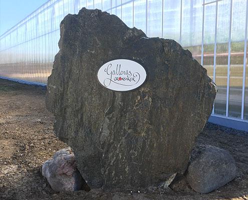 vaxthus-gallenas-entreskylt-sten