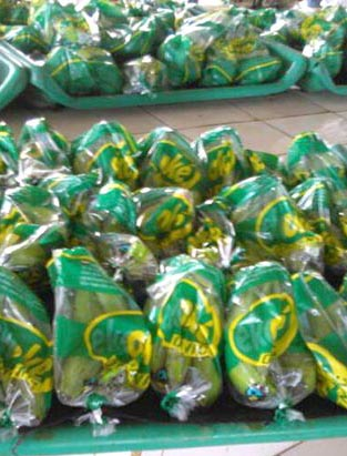 Bananerna packas i ekooké påsen