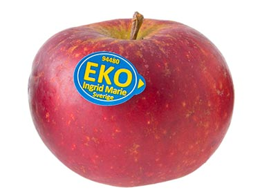 im-eko-m-stickers-img_0056