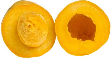 mango-chaunsa-delad-framifran