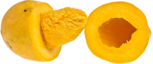 mango-chaunsa-delad-sidan