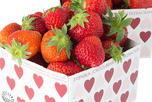 ekebacken-jordgubbar-ask