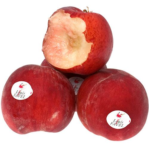 persikor-maura