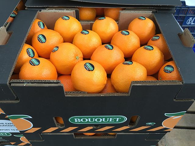 apelsiner-bouquet-IMG_1031