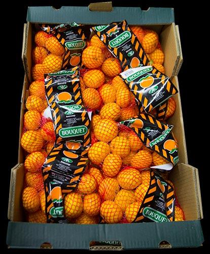 clementin-bouquet-1kg-nat-IMG_0464