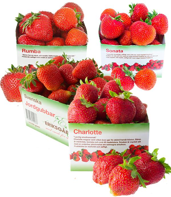 jordgubbar-Eriksgarden-askar-med-sortinfo