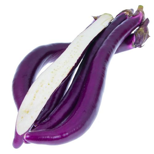 aubergine-long-chinese