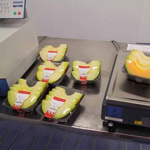 produktion-melon7