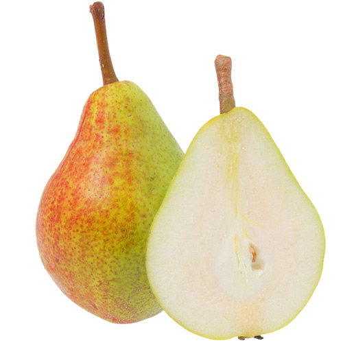 alexander lucas päron