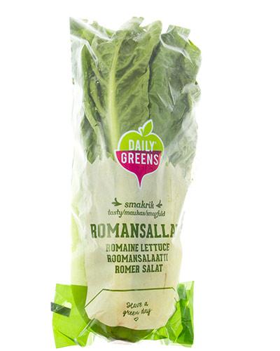 romansallad-pkt-daily-greens-img_5055