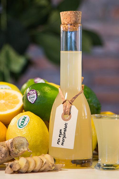 citron och ingefära shot recept