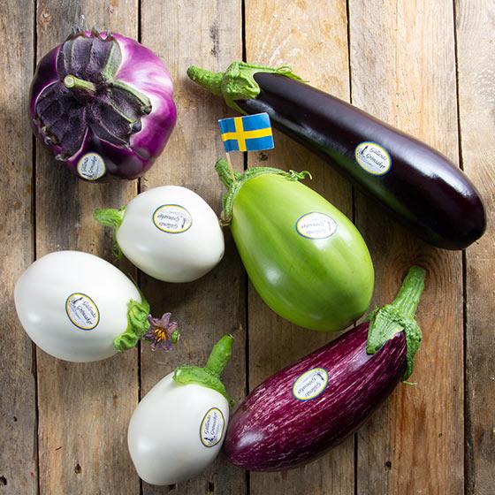 aubergine-mix-pa-bord-gallenas