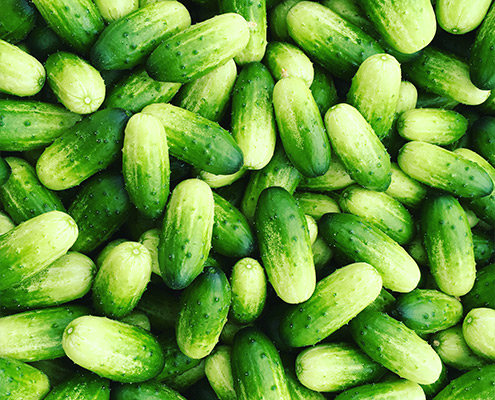 gllenas-snacksgurka