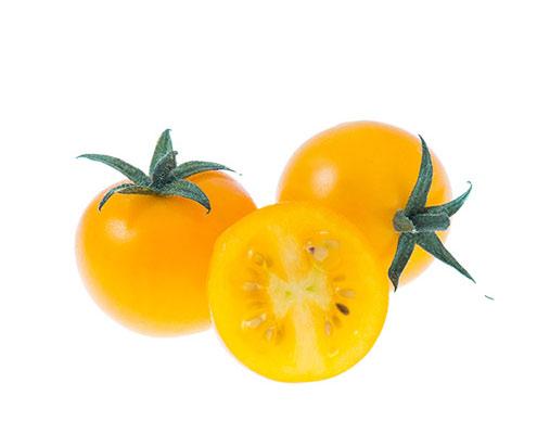 gul-korsbarstomat