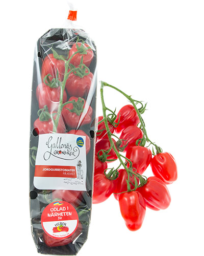 jordgubbskvist-gallenas-pkt-m-tomater-IMG_9485