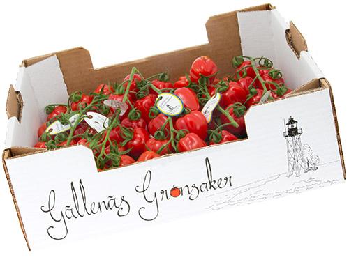 jordgubbstomat-gallenas-lada-sidan