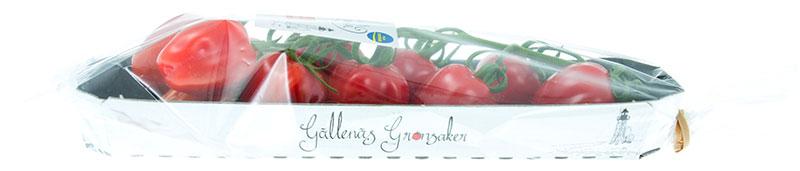 jordgubbstomat-trag-gallenas-sidan-IMG_9242