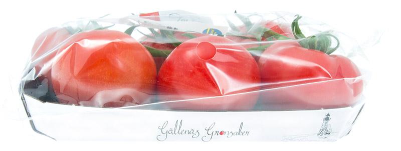 tomater-kvist-trag-gallenas-sidan-IMG_9237