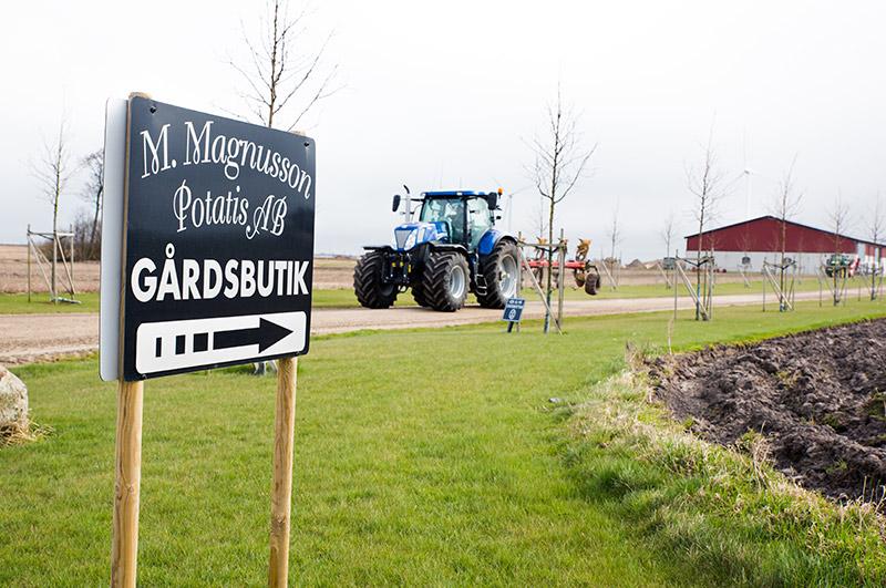 M-magnusson-garden4