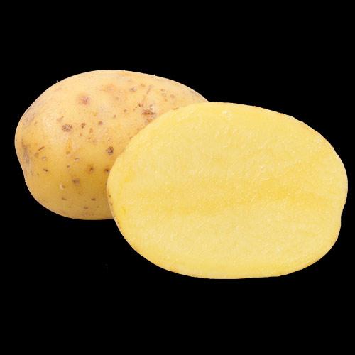 potatis-Belana