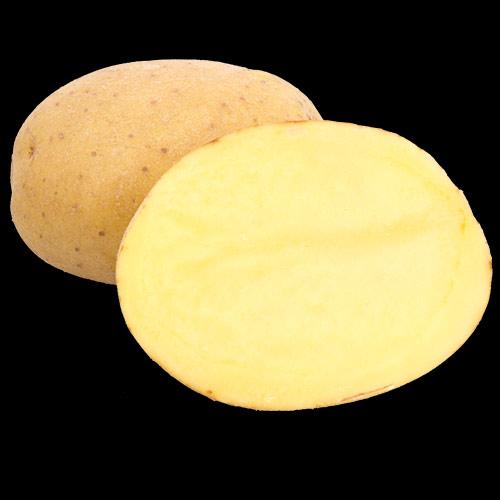 potatis-folva