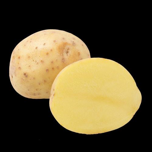 potatis-gala