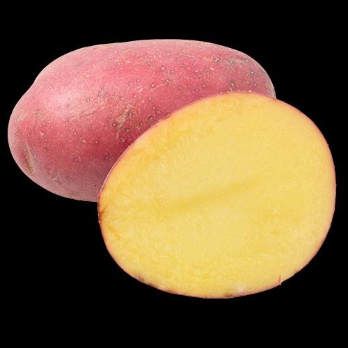 potatis-labella