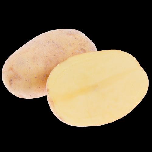 potatis-melody-IMG_8466