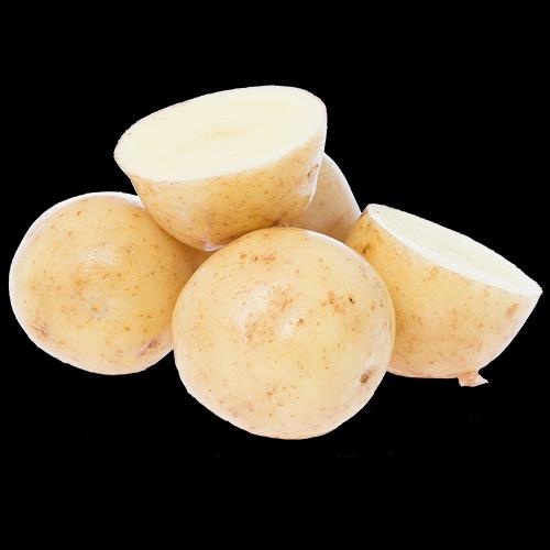potatis-solist-hog