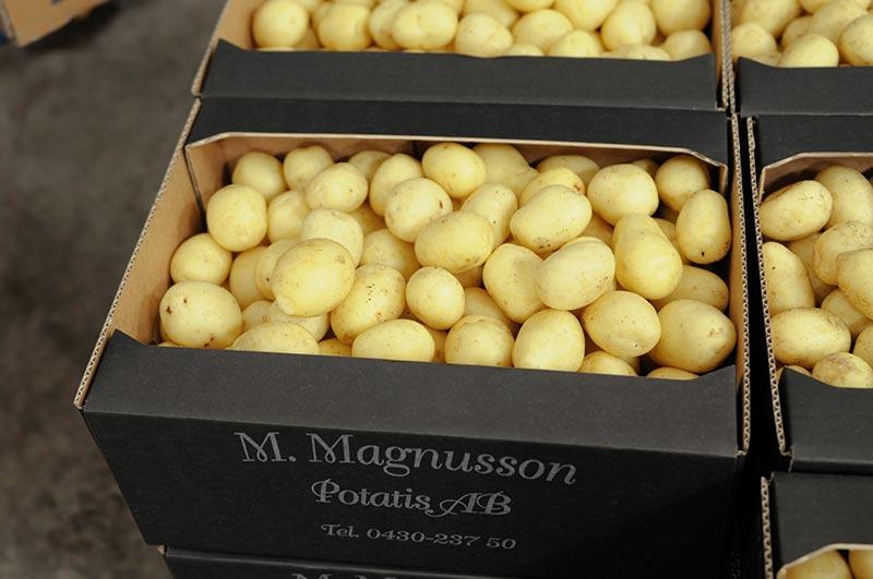 pottis-tvattad-10kg-lador-m-magnusson