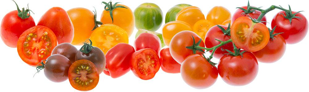 sunnana-tomater-bred