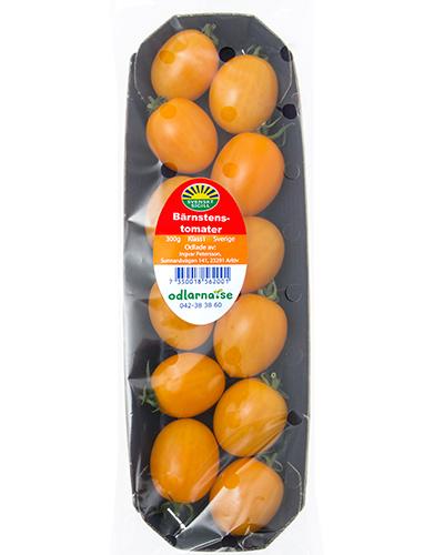tomater-barnsten-sunnana-pkt-IMG_4484