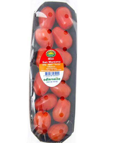 tomater-mini-san-marzano-sunnana-pkt-IMG_4481