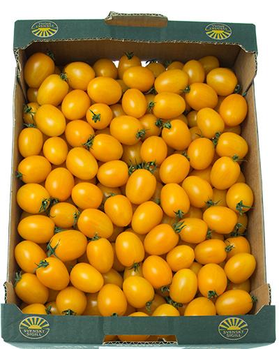 tomater-sunnana-Barnsten-lada-IMG_4505